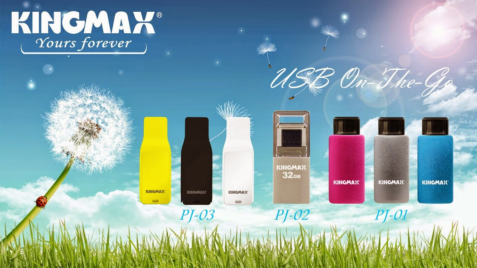 KINGMAX OTG USB Flash Drive series