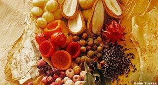 Bush Tucker : Vitamin C Secrets From The Australian Outback