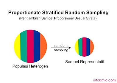diagram teknik sampling proposional berstrata
