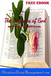 Free Christian PDF ebook on The Promises of God