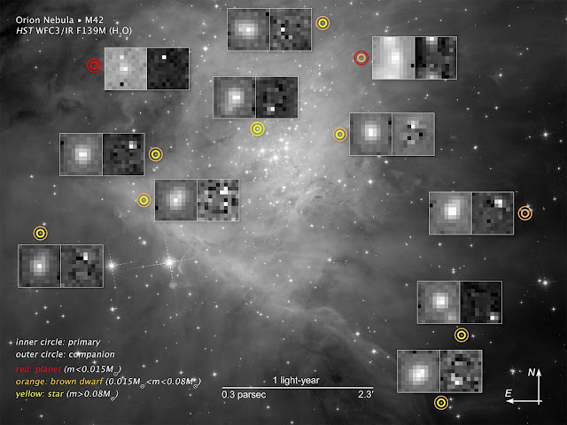 Brown dwarfs found sprinkled among newborn stars in Orion Nebula