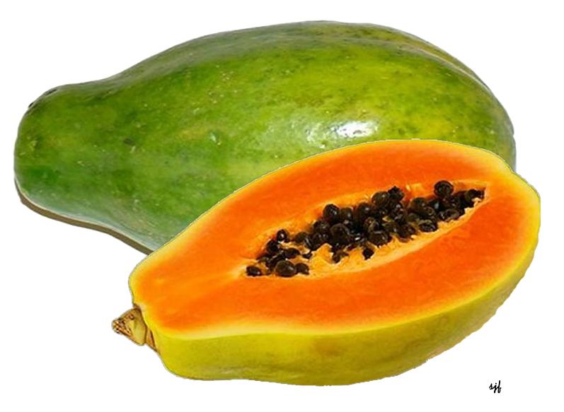 http://4.bp.blogspot.com/-ILX1dTCmakA/T-W1MOcIvLI/AAAAAAAAF2M/EKif3skhb20/s1600/papaya2d.jpg