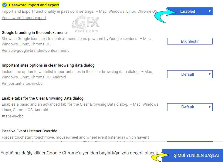 Chromeda Şifreler İçe Ve Dışa Nasıl Aktarılır