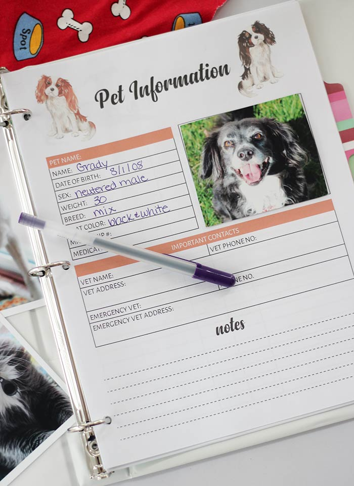the printable pet binder you need to organize your pet records