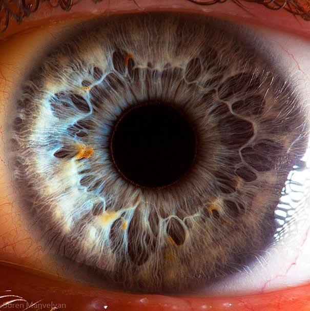eye-macro-photo-6