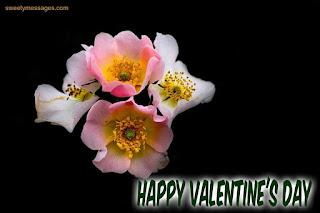 happy valentine day pictures for love,