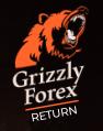 grizzlyforexreturn обзор