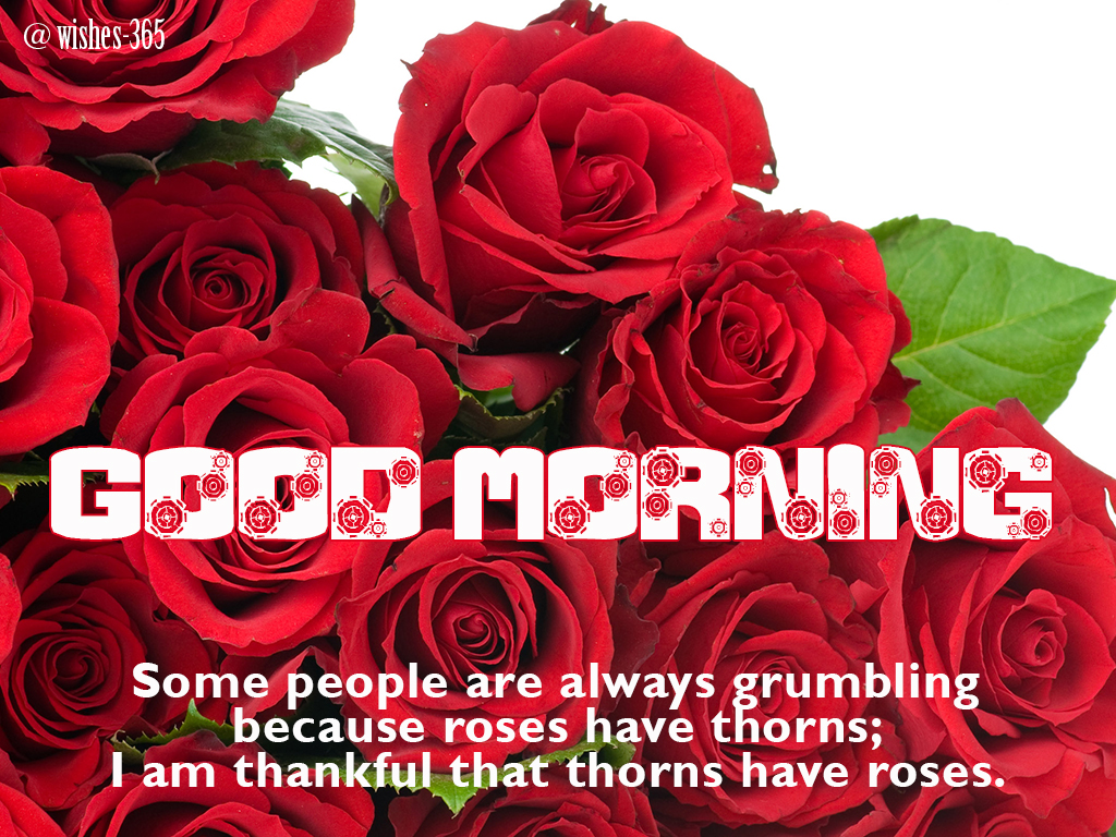 Poetry and worldwide wishes good morning beautiful flowers image good morning beautiful flowers image with quotes izmirmasajfo Image collections