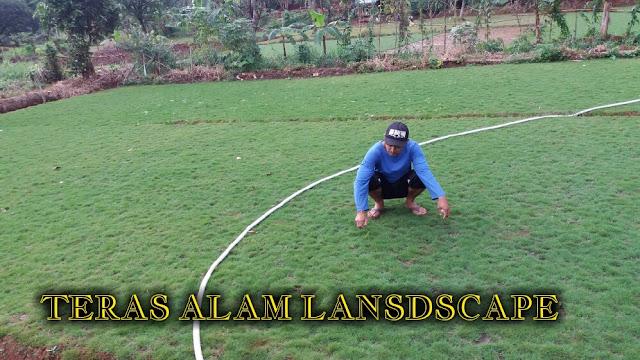 tukang rumput golf
