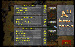 Corona Jumper: Elder Scrolls: Daggerfall (PC, 1996)