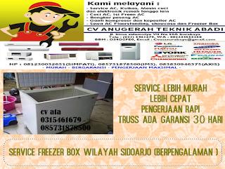 Service Freezer Box Wilayah Sidoarjo (berpengalaman )