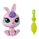 Littlest Pet Shop Series 5 Lucky Pets Fortune Cookie Gwynnie (#No#) Pet