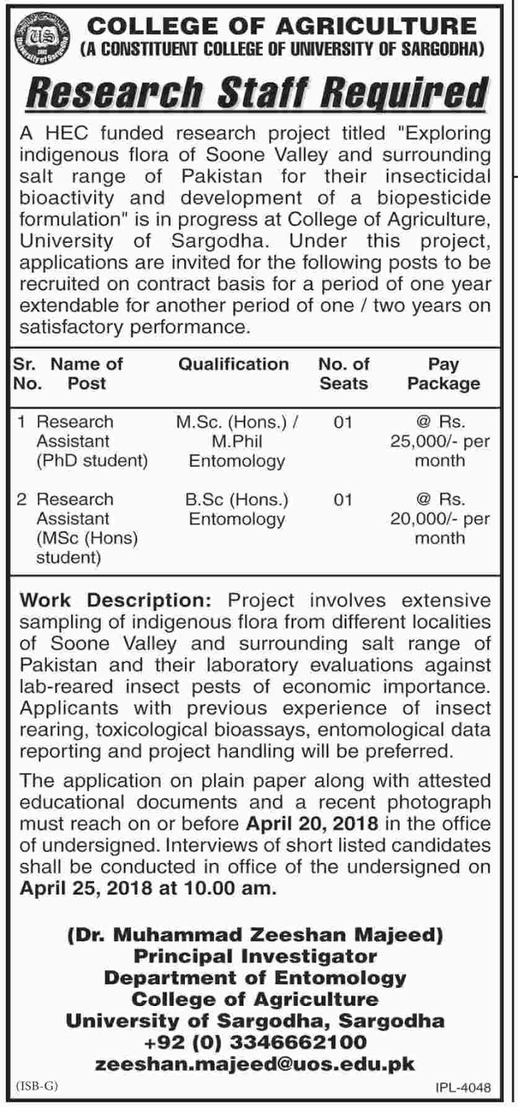 Today Latest Jobs in College of Agriculture Sargodha