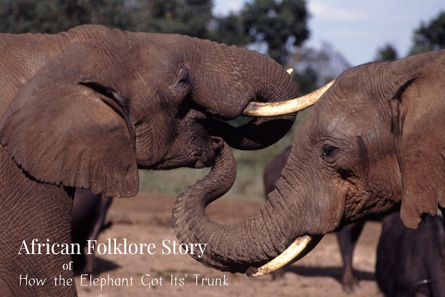 Africa houses over 85% of the world's elephants. African folklore storytelling recounts the adventures of how the African elephant got its' trunk.