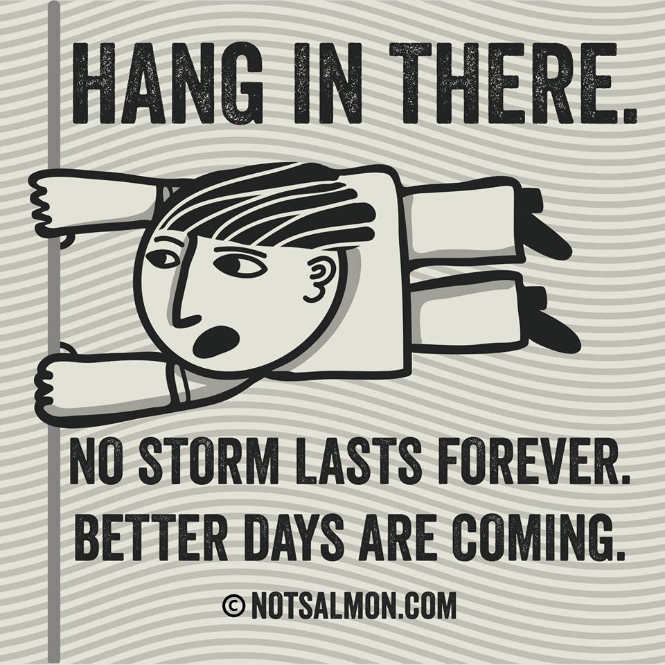 Hd Exclusive Hang In There Quotes Funny Images Mesgulsinyali
