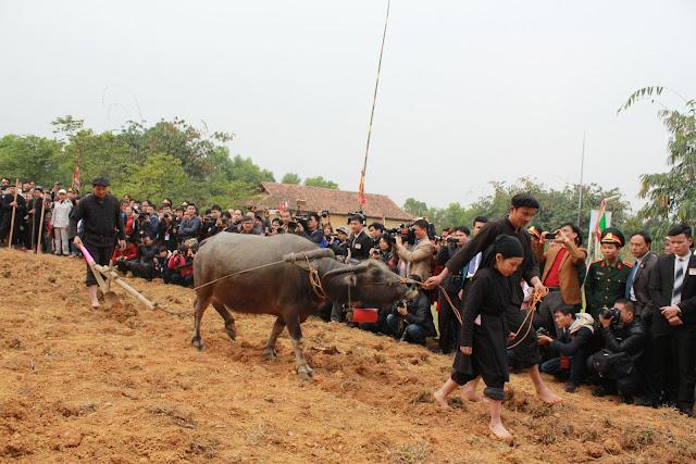 Spring in Vietnam is the season of festivals