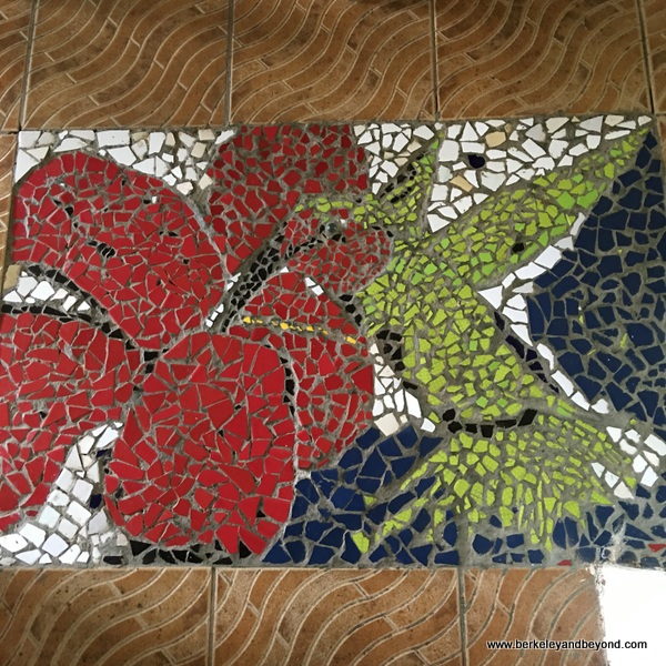 mosaic hummingbird at Cafe Mariposa in Lopinot Village in Trinidad