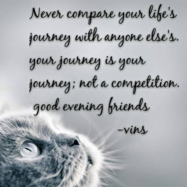 Inspirational Quotes About Life S Journey: Never Compare Your Life's Journey