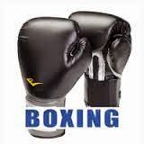 game Boxing cho dien thoai