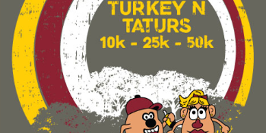 Turkey and TATURs--the 12 year