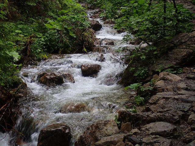 Okolice Strążyskiej (wodospad)