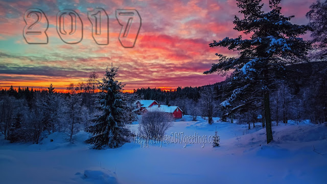 Happy New Year 2017 HD Ice Falling Scenery