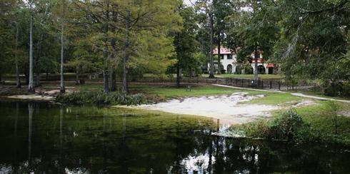 Wakulla Springs Lodge Florida Swamp