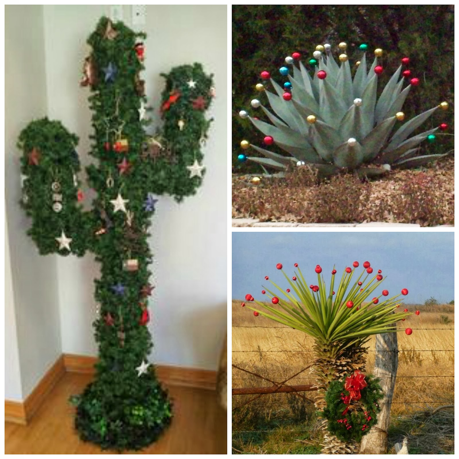 Cactus Decorated For Christmas: Your Merry Mailbox: Texas Week: Merry Christmas Y'all