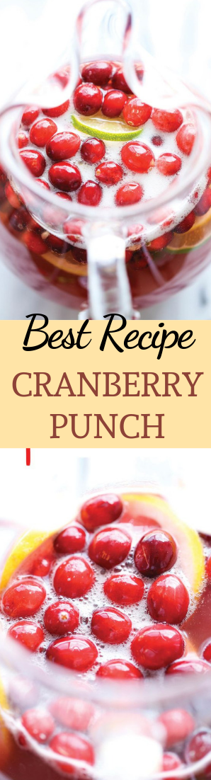 CRANBERRY PUNCH #drink #recipe