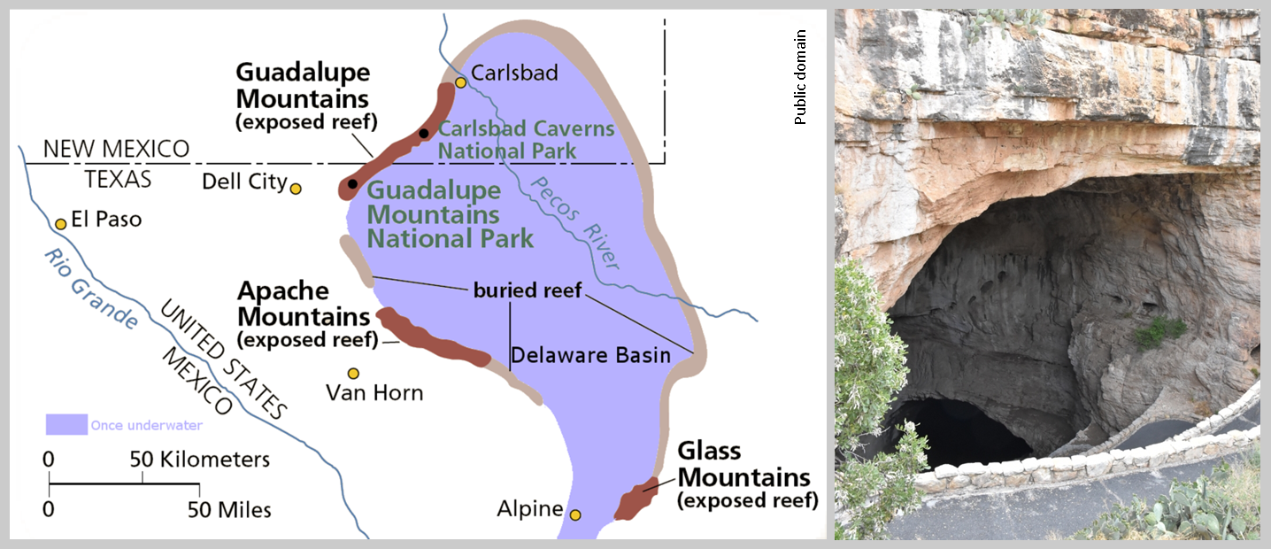 map of the ancient permian limestone reef system that includes present day carlsbad caverns at left source and the natural entrance to the caverns at