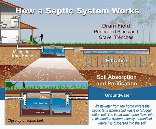 Ecopol project portland state university septic system for Household septic tank design