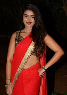 Kiran Chetavani Hot Stills in Saree 1.jpg