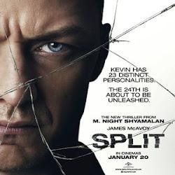 Poster Split 2016