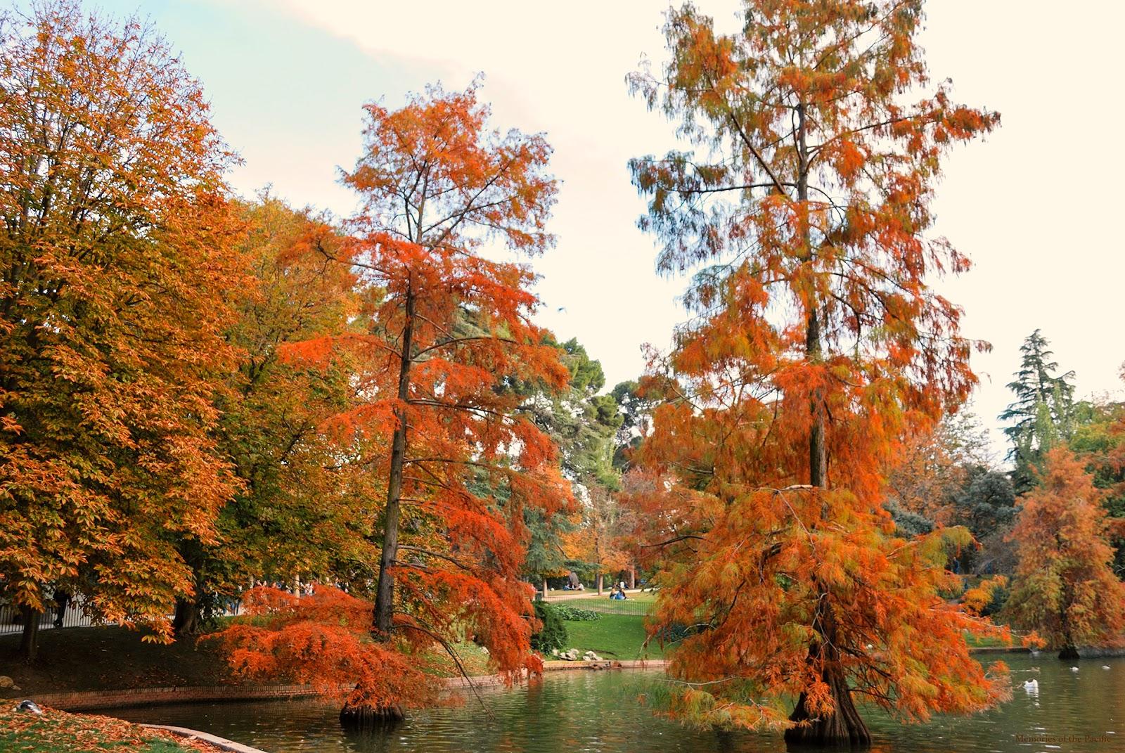 el retiro otoño madrid