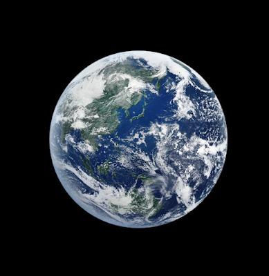 地球と言う星に知的生命体はいなかった話【c】