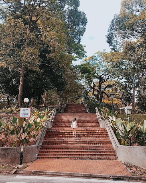 Đến đây, bạn không chỉ được chụp ảnh đẹp mà còn hiểu thêm về một phần lịch sử của đất nước Singapore. Những pháo đài, hầm trú ẩn và con đường từng dùng cho mục đích quân sự giờ đây được bao bọc bởi cây cối hiền hòa và trở thành những điểm chụp hình độc đáo, rất được giới trẻ Singapore yêu thích.