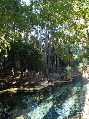 mataranka piscina termale - australia