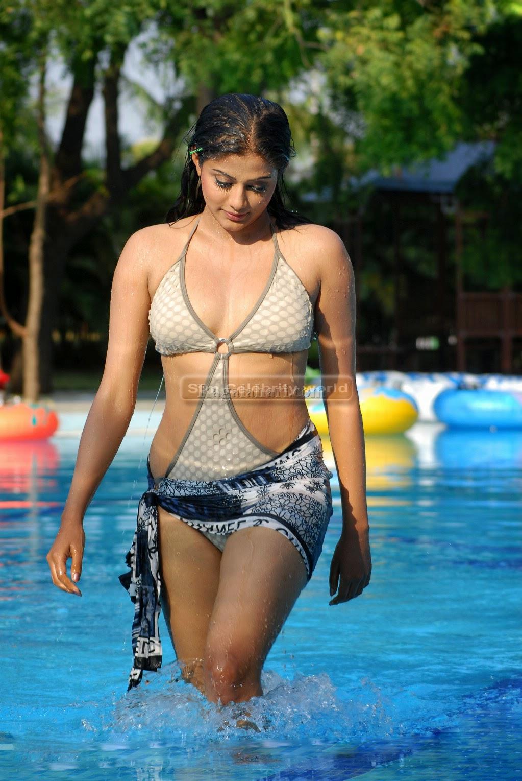 South Indian Actress Priyamani Hottest Hd Bikini Photos