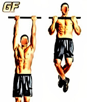 cara membentuk otot punggung chin up