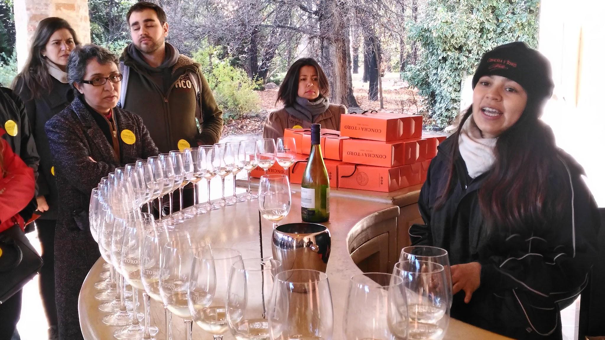 degustação vinho Vinícola Concha Y Toro