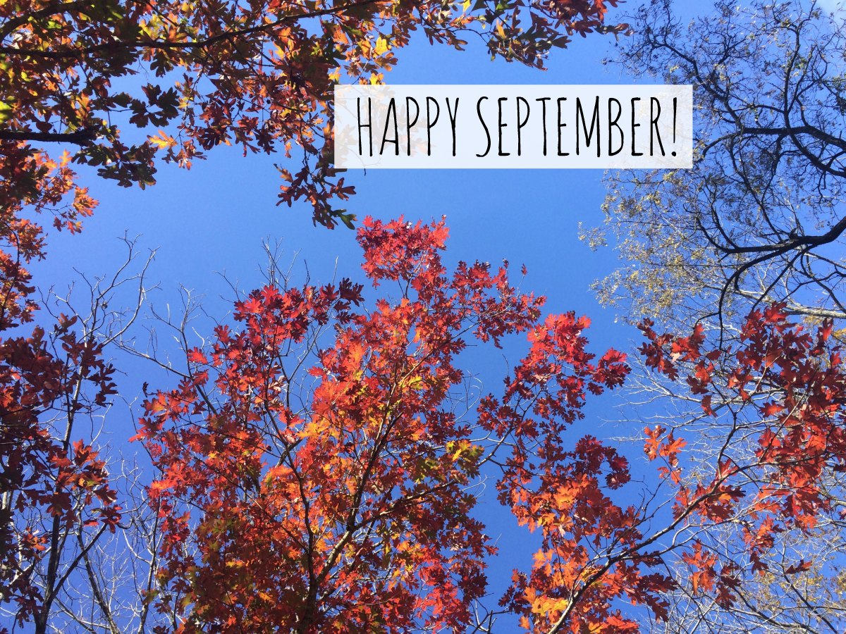 Happy September ~ Letter From The Editor - Pieces of a Mom