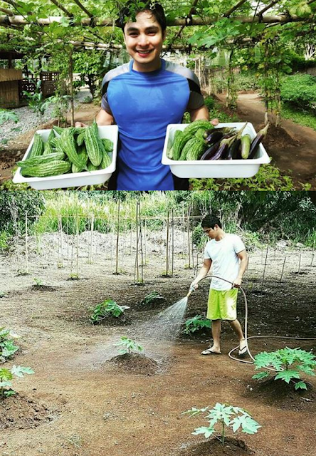True-to-Life 'Probinsyano' Coco Martin Earns Netizen Praise For Vegetable Garden!