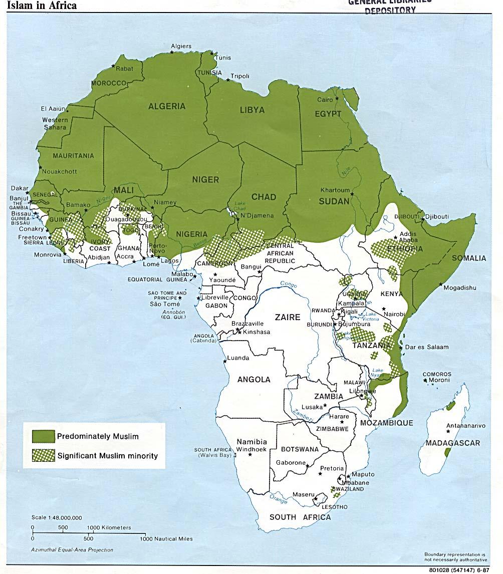 Ислам в Африке