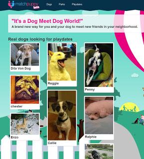 MatchPuppy.com: site de encontros para cachorros