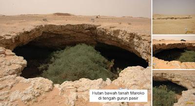 Keajaiban Hutan Bawah Gurun Pasir di Maroko, tanda kiamat?