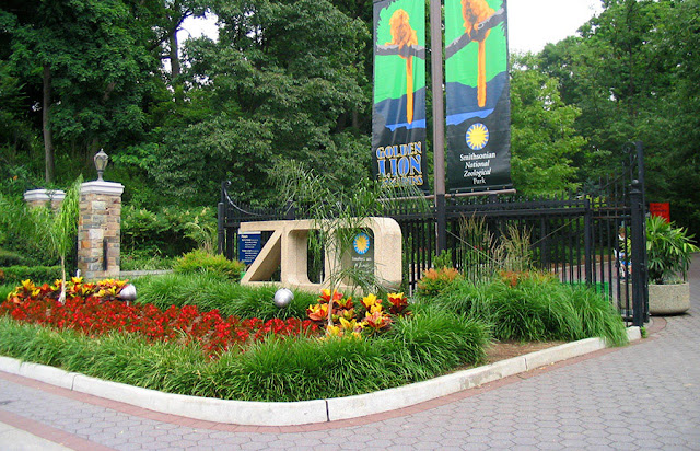 Passeio no Smithsonian National Zoological Park em Washington