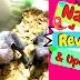 Name REVEAL!! Baby Timneh African Grey UPDATE! Bonus Video Included!