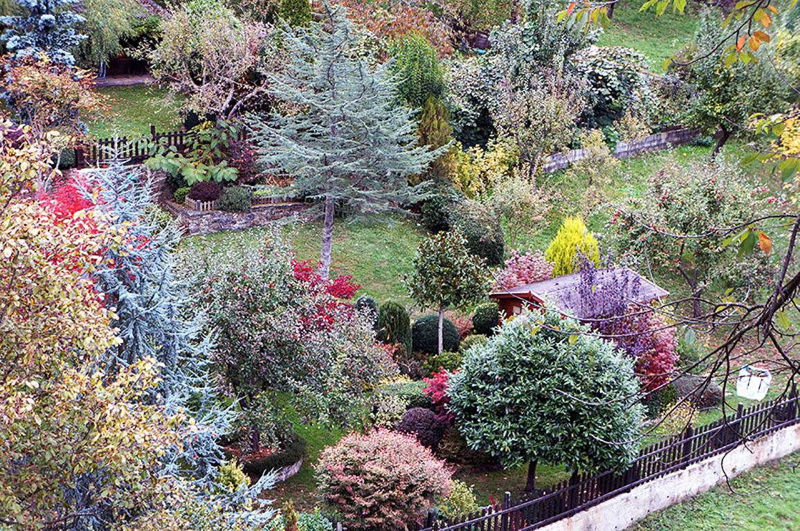 El jard n de la barrosa el jard n de la barrosa - Antorchas solares para jardin ...