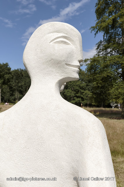 sculpture is a stone resin of a head and shoulders profile