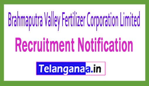 Brahmaputra Valley Fertilizer Corporation Limited BVFCL Recruitment Notification